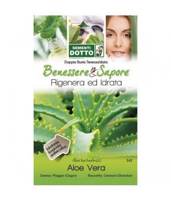 Aloe Vera - Sementi Dotto