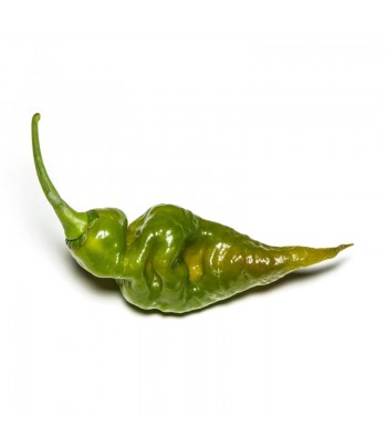 Trinidad Scorpion Green -...